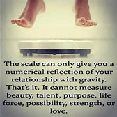blog scale does not